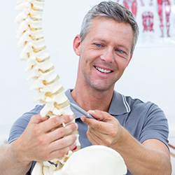 Smiling chiropractor with model of spine.